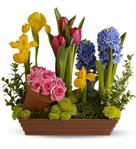 easter centerpiece: Spring Favorite, Easter Centerpieces, Spring Flower, Mothers Day, Floral Design, Flower Bouquets, Minis Gardens, Flower Arrangements, Floral Arrangements