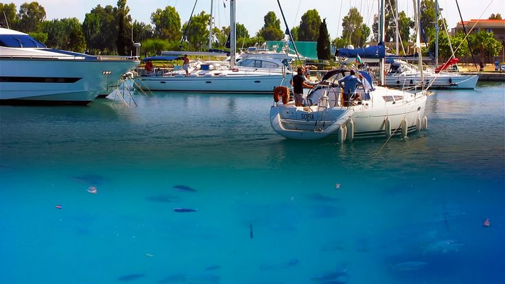 Sani Resort Marina Underwater Life Chalkidiki Greece. Σάνη Χαλκιδκή, η μαρίνα. 87 Km from Thessaloniki, at the first leg of Chalkidiki, Kassandra, lies Sani resort. Within the hotel area, surrounded by organized beaches, exists Sani Marina. Boats can moor here all year round. Shot with GoPro Hero. For more travel news & videos like us on  https://www.facebook.com/bestravelvideo  or  follow https://twitter.com/btrvid. #chalkidiki #χαλκιδικη #halkidiki #sani #saniresort #underwater…