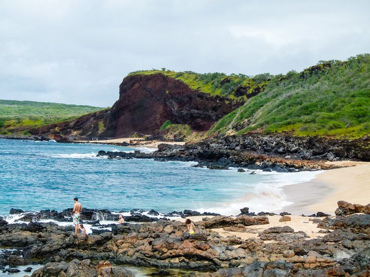 Beach hopping on Molokai offers many opportunities to explore. Read this article to know which beaches to visit when you travel to Molokai.