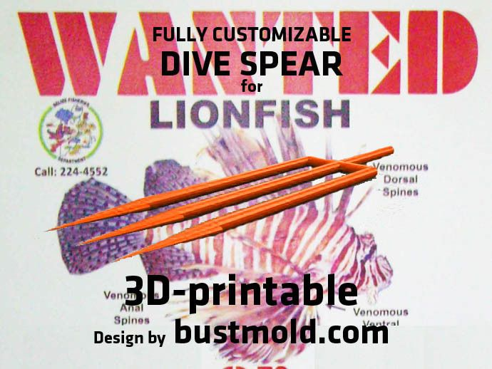 Fully Customizable Dive Spear for Lionfish Hunting V2 by bustmold.