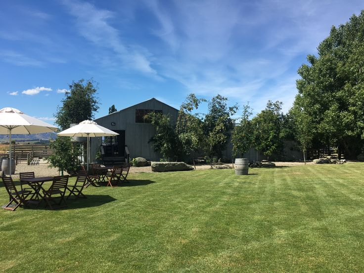 The lawn at our Woolshed..
