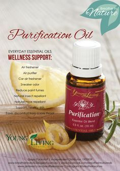 Young Living Essential Oils : Purification Oil. Follow my facebook at www.facebook.com/breatheinnatureoils  #breatheinnature