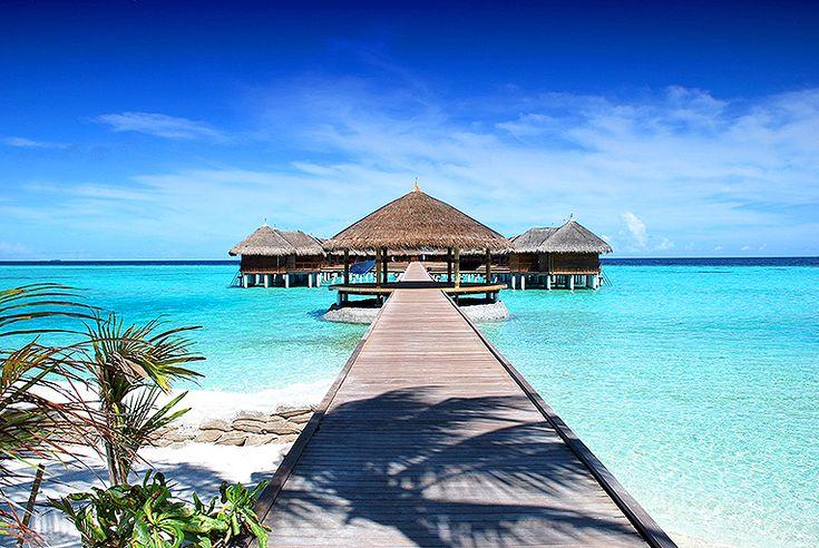 Maldiverna #maldiverna #maldives #travel #resa #semester #paradis