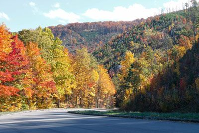 A perfect drive from I-40 to The Old Mill through the Great Smoky Mountains National Park.  5 of 8 road trip photos.