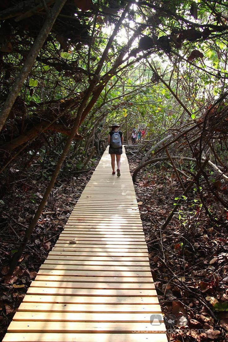 Parque Tayrona - Santa Marta - Colombia