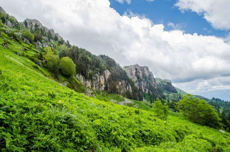 Пейзажи похода на плато Лаго-Наки