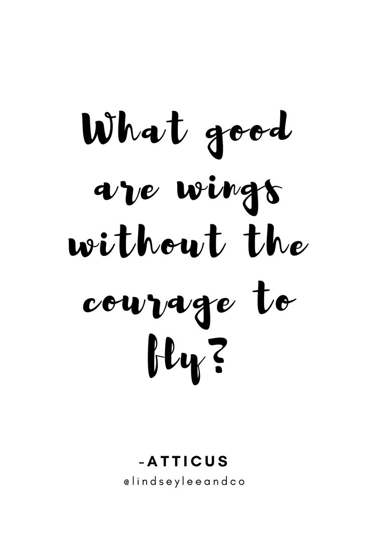 Inspirational Quote. Motivational Quote. What good are wings without the courage to fly? Atticus