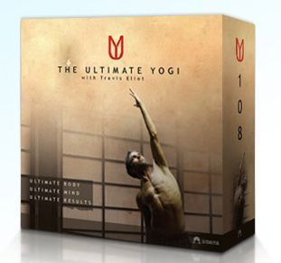 We Picked 9 Top Yoga DVDs That Suit Different Kinds of Students: Best Power Yoga - The Ultimate Yogi