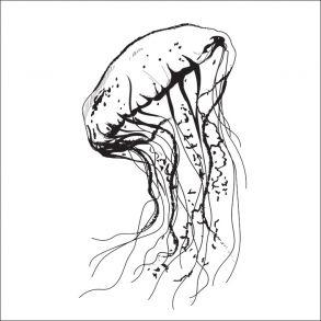 Jellyfish - Transparent Price 6,5 € Vandmand - Gennemsigtig folie. Pris 45 dkk. #aqua #water #sea #ocean #vand #hav #painting #graphic #drawing #homejunkie #tilesticker