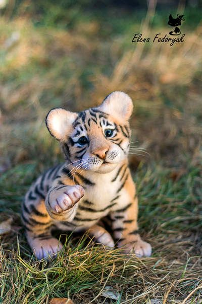Tiger cub Amure By Elena Fedoryak - just wow...                                                                                                                                                                                 More