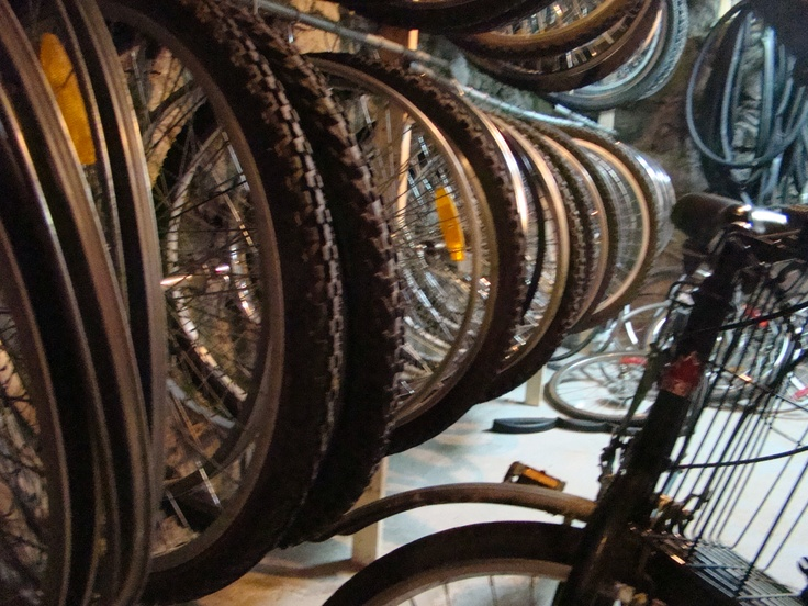 Bike Shop: Shops, Cycling