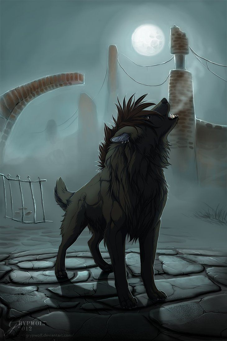 My solitude by Grypwolf on DeviantArt | Wolf | Wolf, Anime ...