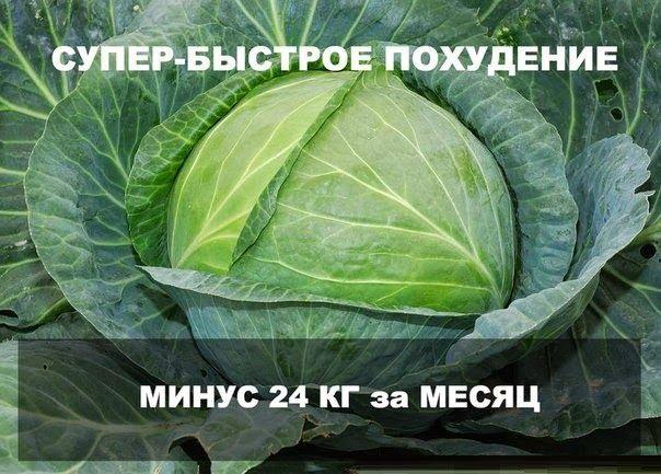На Сырой Капусте Похудела. Насколько эффективна капустная диета – отзывы и результаты похудевших и варианты меню