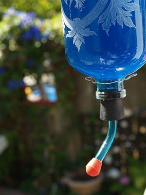 blue hummingbird feeder