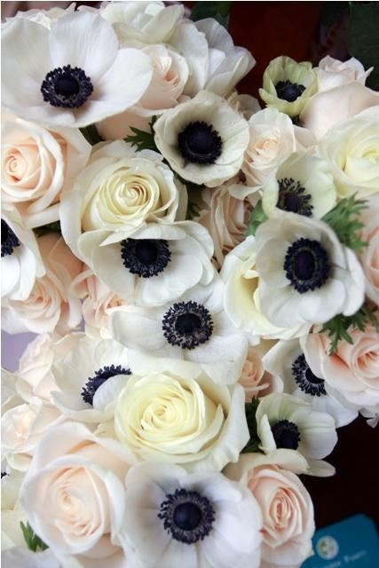 I adore these anemones. Just seem so romantic and whimsical. Probably one of my favorite flowers.