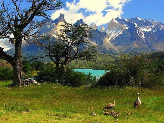 Lago Pehoe - Patagonia Chilena