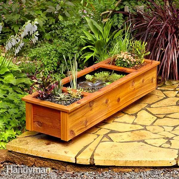 One expert shares his design for a patio pond in a wooden container that holds both water plants and regular plants.