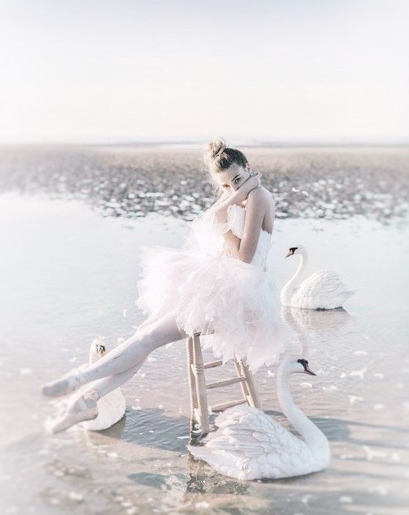 Stunning - Swan Lake made ten times more powerful by the ocean. xx