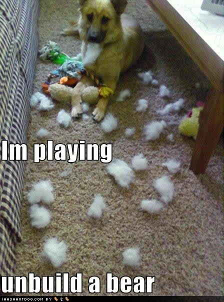 haha!Stuffed Toys, Games, Puppies, Funny Dogs, Bears, House, Funnydogs, So Funny, Stuffed Animal