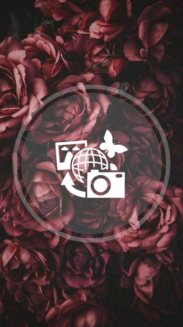 Pin De Merle Simson Em Highlight Ideias Instagram Arte De Camera Instagram Dicas