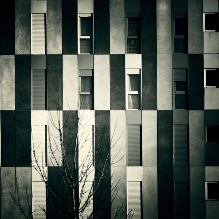 ... y un árbol by Pierre Olivier, via 500px