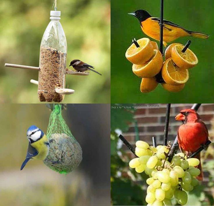 25 best ideas about homemade bird baths on pinterest for Homemade bird feeders