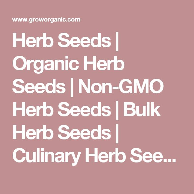 Herb Seeds | Organic Herb Seeds | Non-GMO Herb Seeds | Bulk Herb Seeds | Culinary Herb Seeds | Medicinal Herb Seeds
