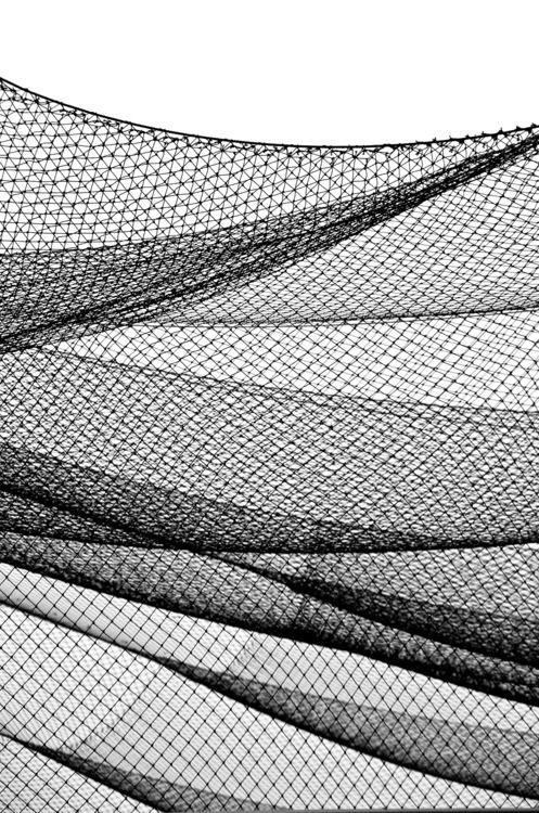 battling cage aurum design