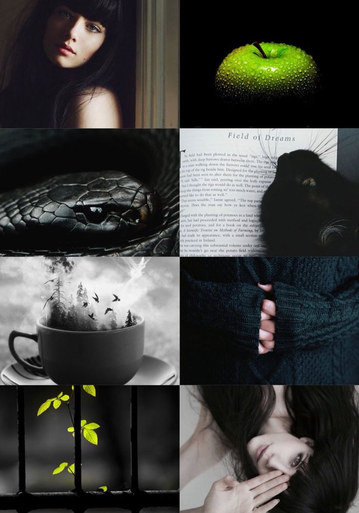 Aesthetic Collage Pansy Parkinson Harry Potter