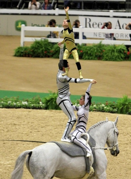 World Equestrian Games 2010