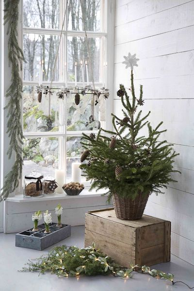 "NEUTRALS FOR THE HoLiDay...  LoVe the ""Small Tree"" in the woven basket on top of crate! Love the sweet garland in the window too."