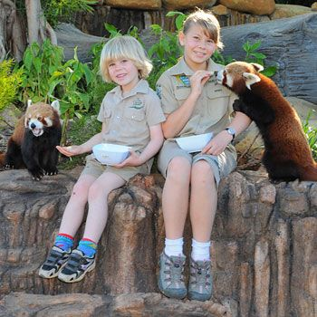 Bob and Bindi Iriwn welcome Australia Zoos latest arrivals. Photo:Courtesy, Australia Zoo.