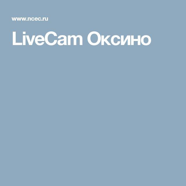 LiveCam Оксино