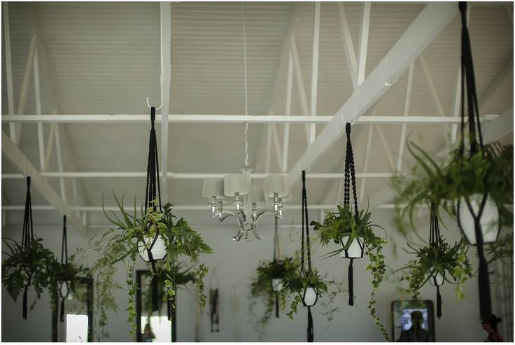 Soon you will be able to buy these macrame plant hangers for your wedding from our online store!