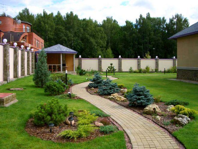 хвойный сад фото