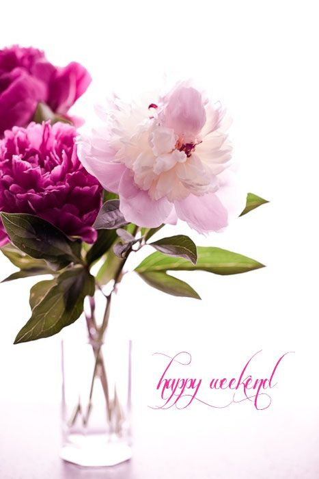 Happy weekend, ladies! Thank you for your beautiful pins :)