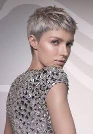 Afbeeldingsresultaat voor korte kapsels grijze haren  50 plussers