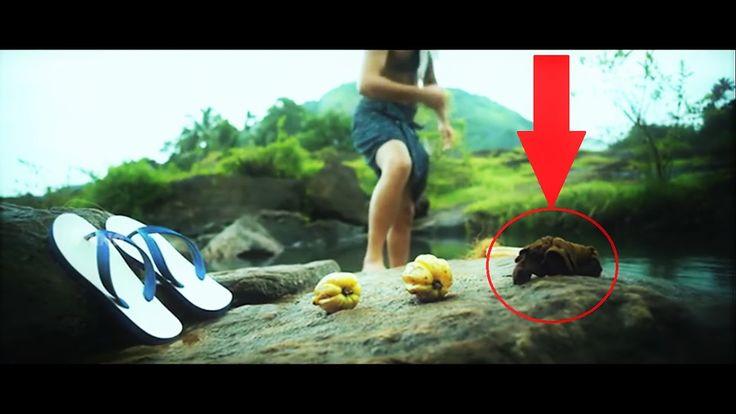 4 Things You MISSED in Maheshinte Prathikaram 4 things that makes Maheshinte Prathikaram a brillaint movie