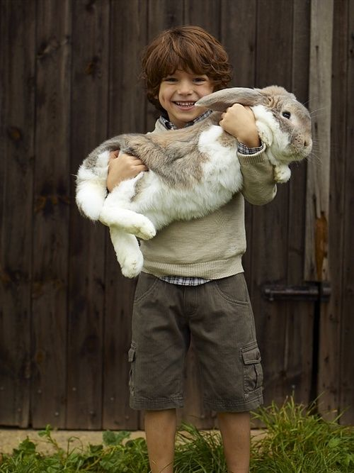...now that is one very BIG bunny rabbit!! ;-)