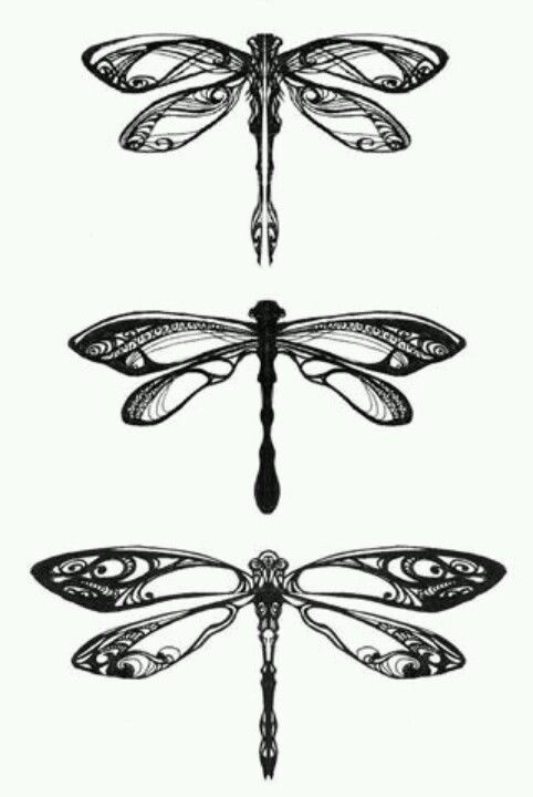 Dragonfly-strong lines, bold. But simple design with just enough details …