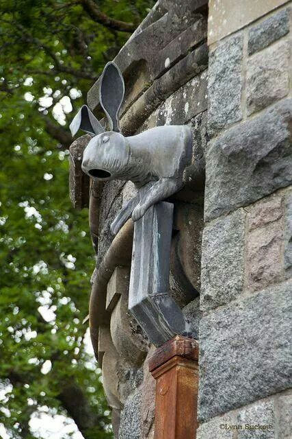 17 Best Images About Downspout Diverter On Pinterest