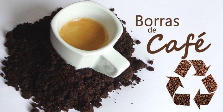 É quase impossível que em nossa casa não haja borras de café. Não desperdice. Podem ser uma valiosa ajuda para a nossa horta. Veja como as pode usar.