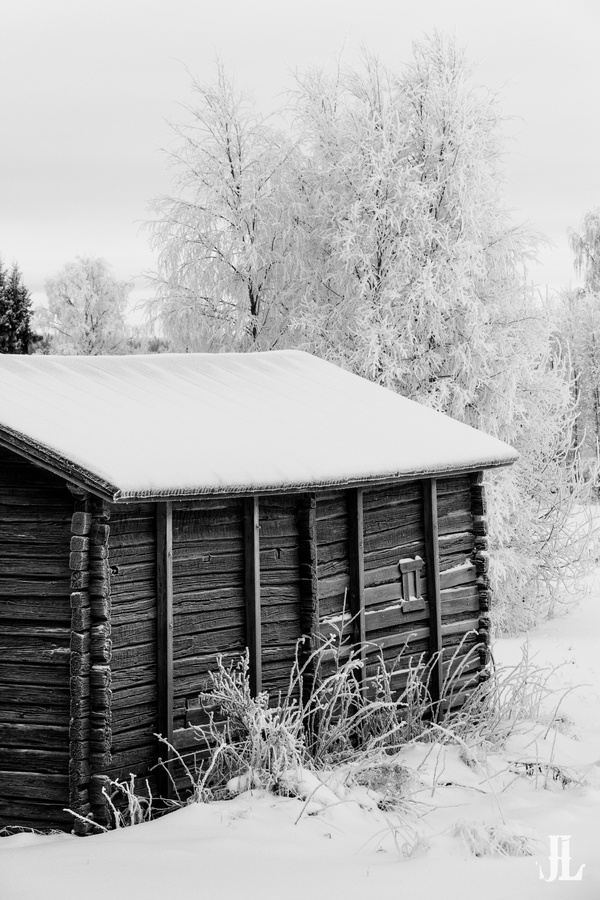 Barn in the Cold