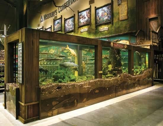 I LOVE the idea of having a big fish tank (in the dining room and/or lobby) with fish caught in the local area by staff (and maybe even special guests) for the guests to enjoy...