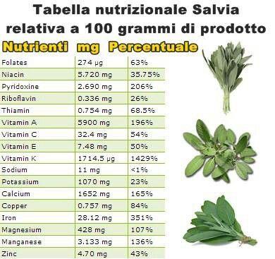 Salvia vitamineeproteine.com