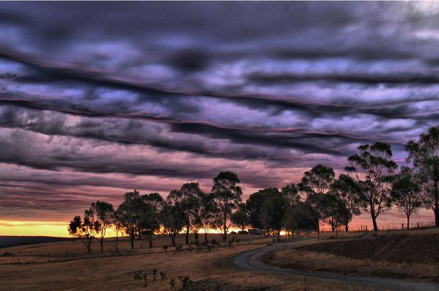 Calendar showcases Mother Nature in all her glory | Toowoomba Chronicle