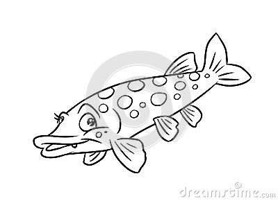 Charmant Pike Fish Illustration Coloring Pages