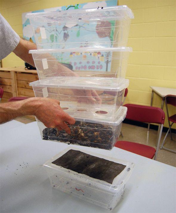 Diy Compost Bin Trash Can: 25+ Best Ideas About Homemade Compost Bin On Pinterest