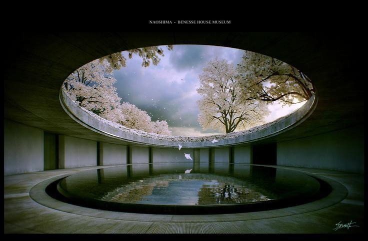 'Naoshima - Cherry Blossom'   By Alex Roman