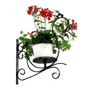 Suport de flori de perete din fier forjat in forma de gainusa. Mai multe informatii despre pret si dimensiuni http://www.metaldesign.ro/ro/suporti-flori-de-perete-din-fier-forjat/15-suport-flori-pasare-din-fier-forjat.html